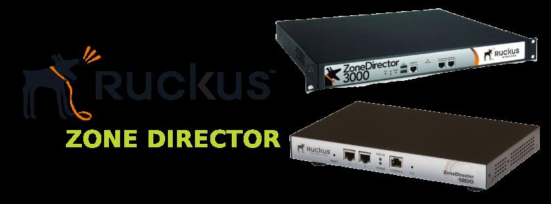 ruckus zone director